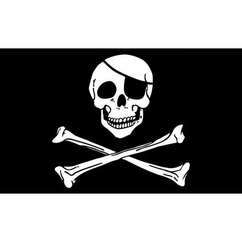 skull bones pirate flag polyester 3x5 flags for only 4 99