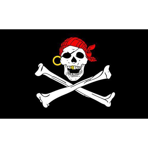 Gold Teeth Skull Pirate Flag