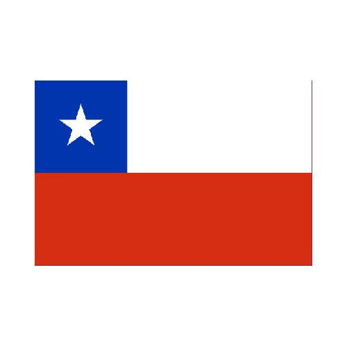 Chile-cl-3x5-polyester-nylon-flag
