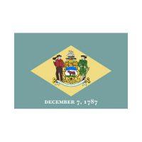 Delaware State 3×5 flag