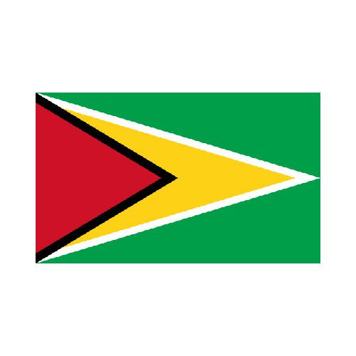 [OUT OF STOCK] Guyana 3x5 Flag