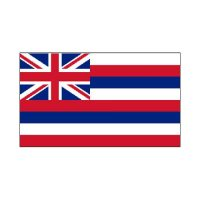 Hawaii State 3×5 flag