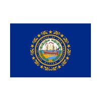 New Hampshire State 3×5 flag