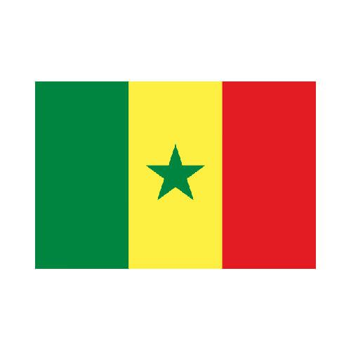 [OUT OF STOCK] Senegal 3x5 Flag